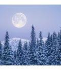 Wall calendar Moon 2020