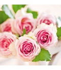 Wall calendar Roses – scented 2020