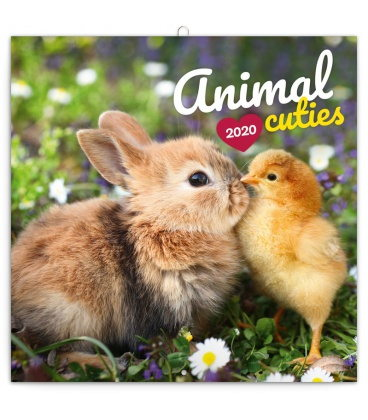 Wall calendar Animal Cuties 2020