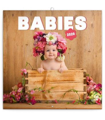 Wall calendar Babies 2020