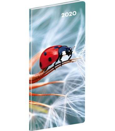 Monthly Pocket Diary planning Ladybug SK 2020