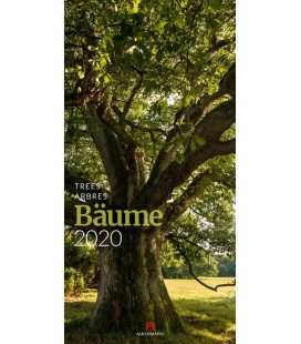 Wall calendar Bäume 2020