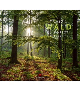 Wall calendar Wald 2020