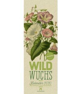 Wall calendar Wildwuchs - Botanische Illustrationen - Graspapier-Kalender 2020