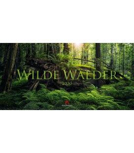 Wall calendar Wilde Wälder 2020