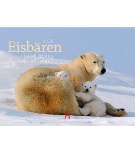 Wall calendar Eisbären 2020