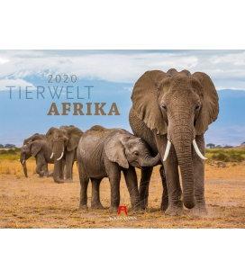 Wall calendar Tierwelt Afrika 2020
