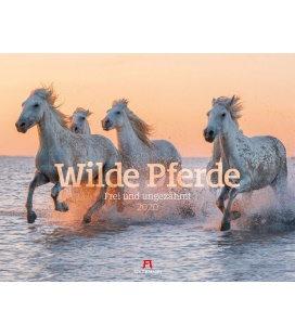 Wall calendar Wilde Pferde 2020