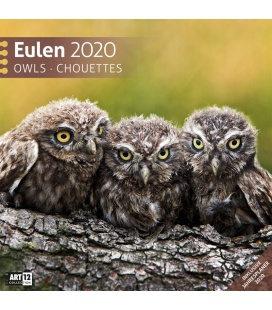Wall calendar Eulen 2020