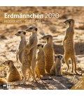 Wall calendar Erdmännchen 2020