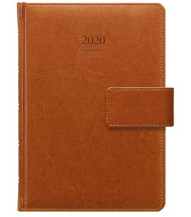 Daily Diary A5 Kastor s poutkem brown 2020