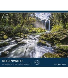 Wandkalender Regenwald / Der Grüne Planet 2020
