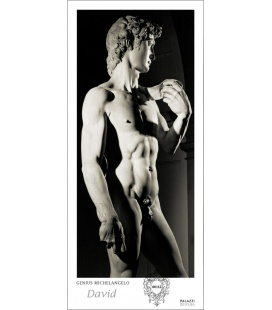 Wandkalender Genius Michelangelo: DAVID Panorama Zeitlos 2020