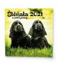 Wall calendar note Štěňata  2021