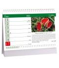 Table calendar Houby 2021