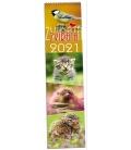 Wall calendar Zvířata - vázanka 2021