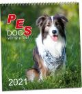Wall calendar Pes 2021