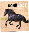 Wall calendar Koně 2021