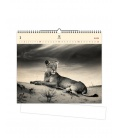 Wall calendar Lioness (motive on the wooden material) 2021