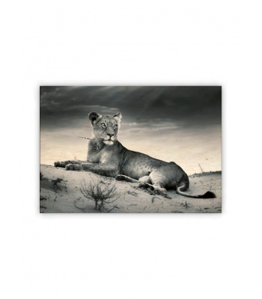 Wall calendar - Wooden picture - Lioness 2021