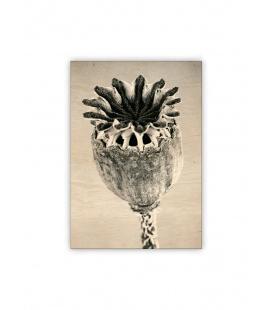 Wall calendar - Wooden picture - Poppyhead 2021