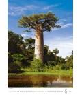 Wall calendar Trees/Baume/Stromy 2021