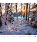 Wall calendar Forest/Wald/Les 2021