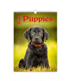 Wall calendar Puppies/Welpen/Štěňátka/Šteniatka 2021
