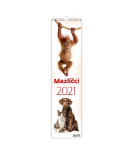 Wall calendar Mazlíčci - vázanka 2021
