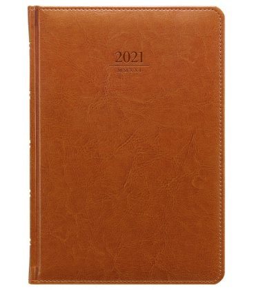 Daily Diary A5 Kastor brown 2021