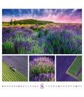 Wall calendar Colours od Nature 2021