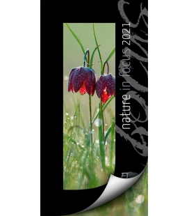 Wall calendar Nature in Focus Kalender 2021
