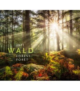 Wall calendar Wald Kalender 2021