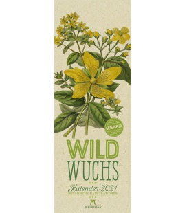 Wall calendar Wildwuchs - Botanische Illustrationen - Graspapier-Kalender 2021