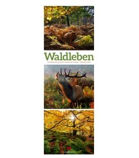Wall calendar Waldleben - Ein Spaziergang durch heimische Wälder, Triplet-Kalender 2021