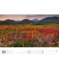 Wall calendar Blumenmeer - Landschaften in voller Blüte, Kalender 2021
