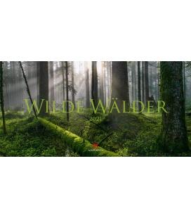 Wall calendar Wilde Wälder Kalender 2021