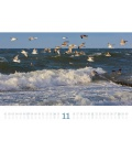 Wall calendar Tage am Meer Kalender 2021