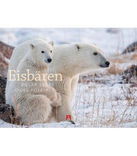 Wall calendar Eisbären Kalender 2021