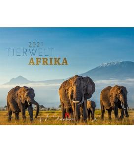 Wall calendar Tierwelt Afrika Kalender 2021