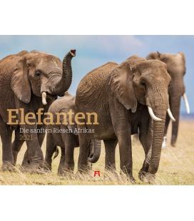 Wall calendar Elefanten Kalender 2021