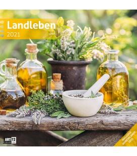 Wall calendar Landleben Kalender 2021