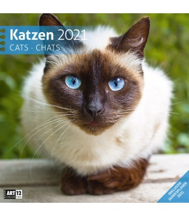 Wall calendar Katzen Kalender 2021