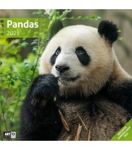 Wall calendar Pandas Kalender 2021