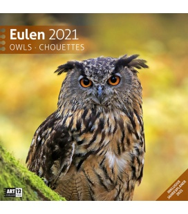 Wall calendar Eulen Kalender 2021