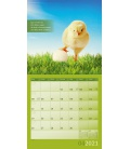 Wall calendar Alles wird gut! Kalender 2021
