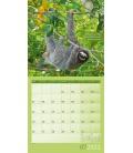 Wall calendar Keep Smiling! Kalender 2021