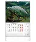 Wall calendar Fishing CZ 2021