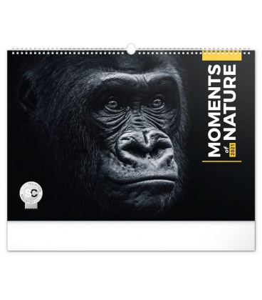 Wall calendar Moments of Nature 2021