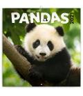 Wall calendar Pandas 2021